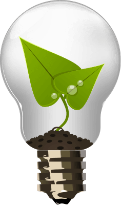 big-bulb-icon1